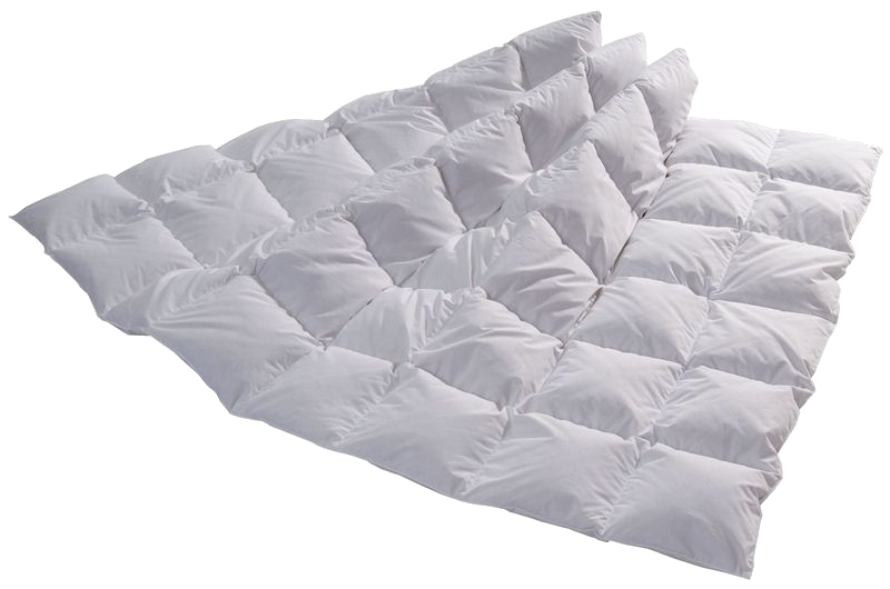 Dreams of Switzerland Medium Karo Duvet 160x240cm statt Fr. 699.- nur 499.-